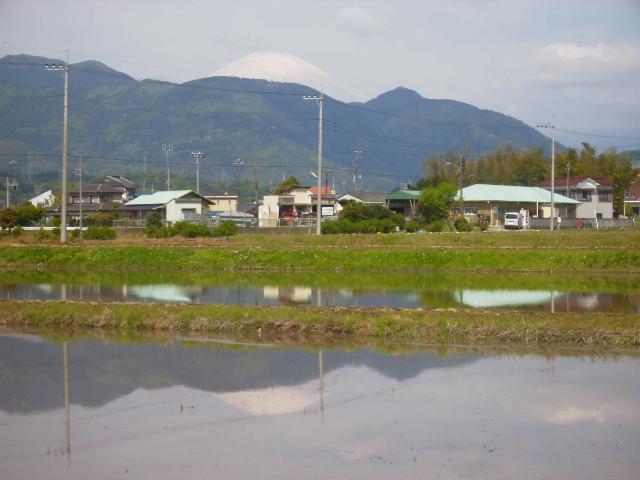 田んぼの逆さ富士29