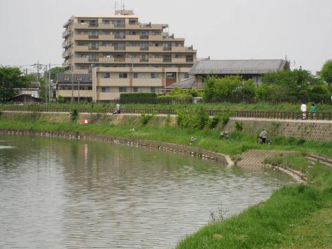 綾瀬川・蒲生愛宕町