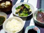 ミョウガ・レタス・海苔のサラダ
