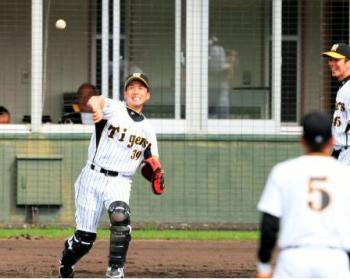 絵日記2・12矢野さん送球
