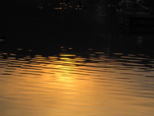 大池に日が落ち