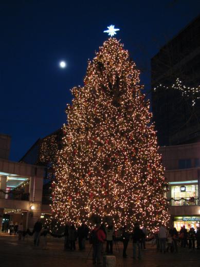 Faneuil_hall_Christmasstree03.jpg