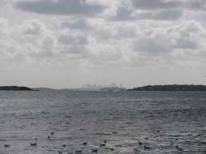 bostonview_from_marbleheadneck.jpg