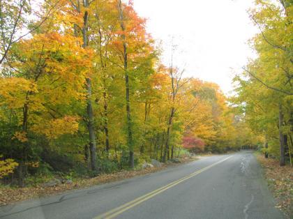 fall_foilage_golfc08.jpg