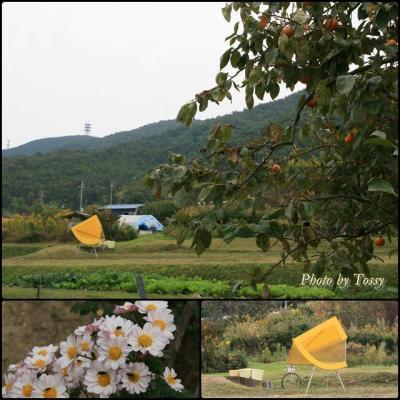 船坂ビエンナーレ2009