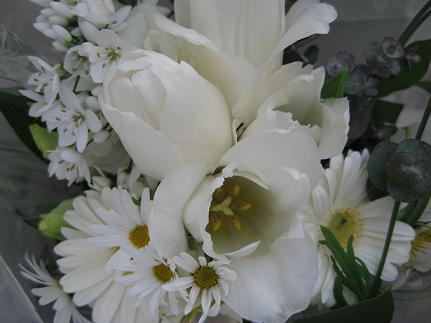 供えた、お花・・・