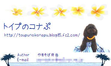 name card 2