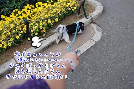 022-091111D.jpg