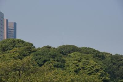 東京スカイツリーの証拠写真:α55