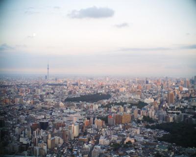 東京スカイツリーと小望月:R2