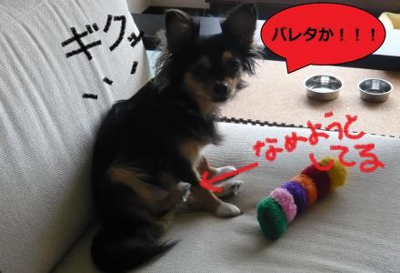 縺弱¥_convert_20091002161527