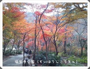 2011_1129_132917.jpg