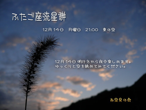 2009 12  14 ふたご座流星群