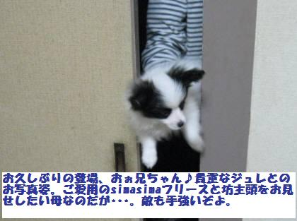 IMG_1454o.jpg