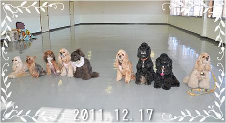 20111217-集合写真(2)
