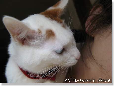 daichi120323_4