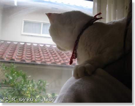 daichi120323_6