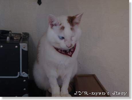 daichi120403_7
