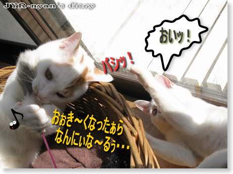 ichidai110325