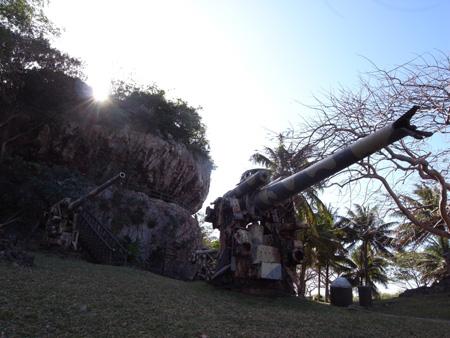 2010013207