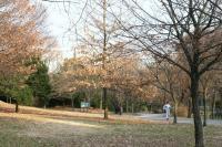 新春の緑道5
