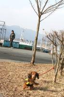 箱根駅伝コース巡り10