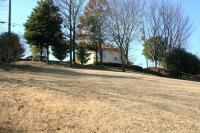 冬の緑道斜面d