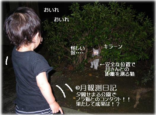 20110906tsuki1.jpg