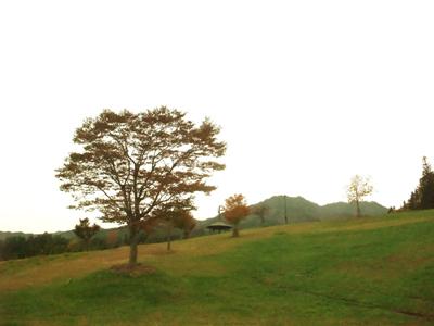 2011-11-sanpo-01.jpg
