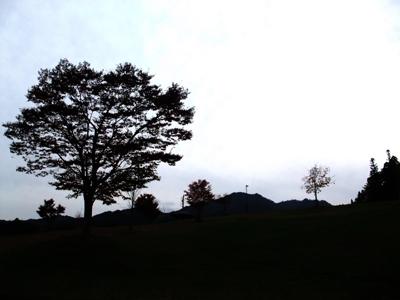 2011-11-sanpo-02.jpg