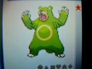 緑なクマー