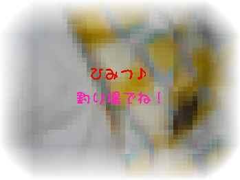 aP1040147.jpg
