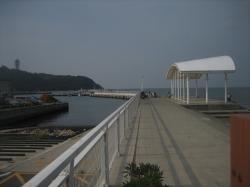 片瀬漁港②