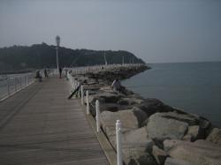 片瀬漁港③