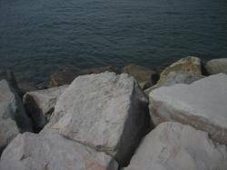 片瀬漁港④