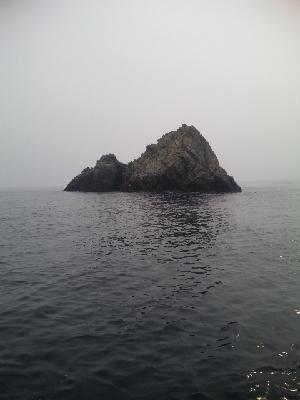 沖 小屋島
