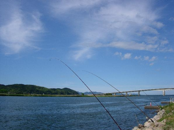 DSCN5212大橋川