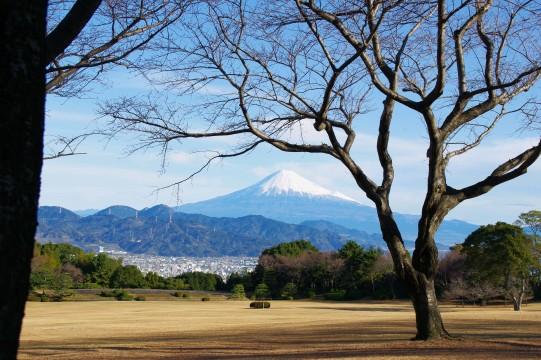 21.12.12日本平の富士山 02318