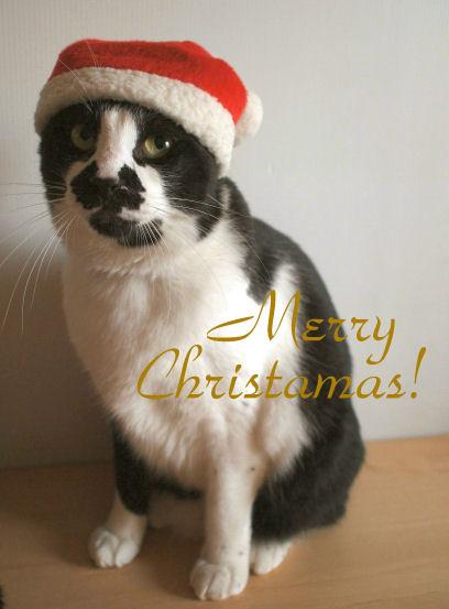 メリークリスマス!