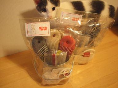 猫の暮らしハッピーバッグ