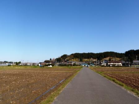 sP3220119.jpg
