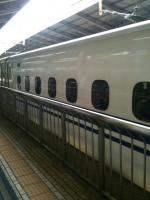 201010291