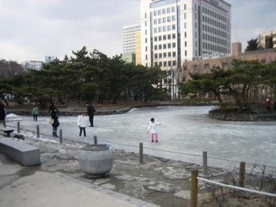 20100124_0508.jpg