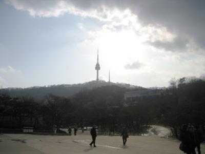 20100124_0510.jpg