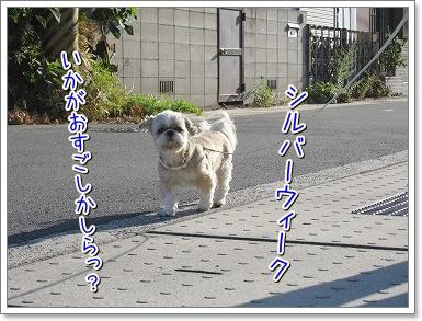 20090921(2).jpg