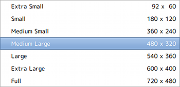 Ubuntu Thoggen DVDリッピング 動画サイズ