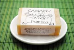 pooch shampoo