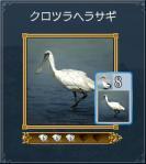 15_クロツラヘラサギ