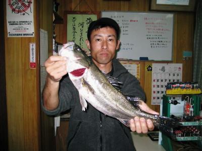 20100410kouchi.jpg