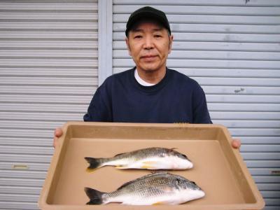 20100529wakino.jpg